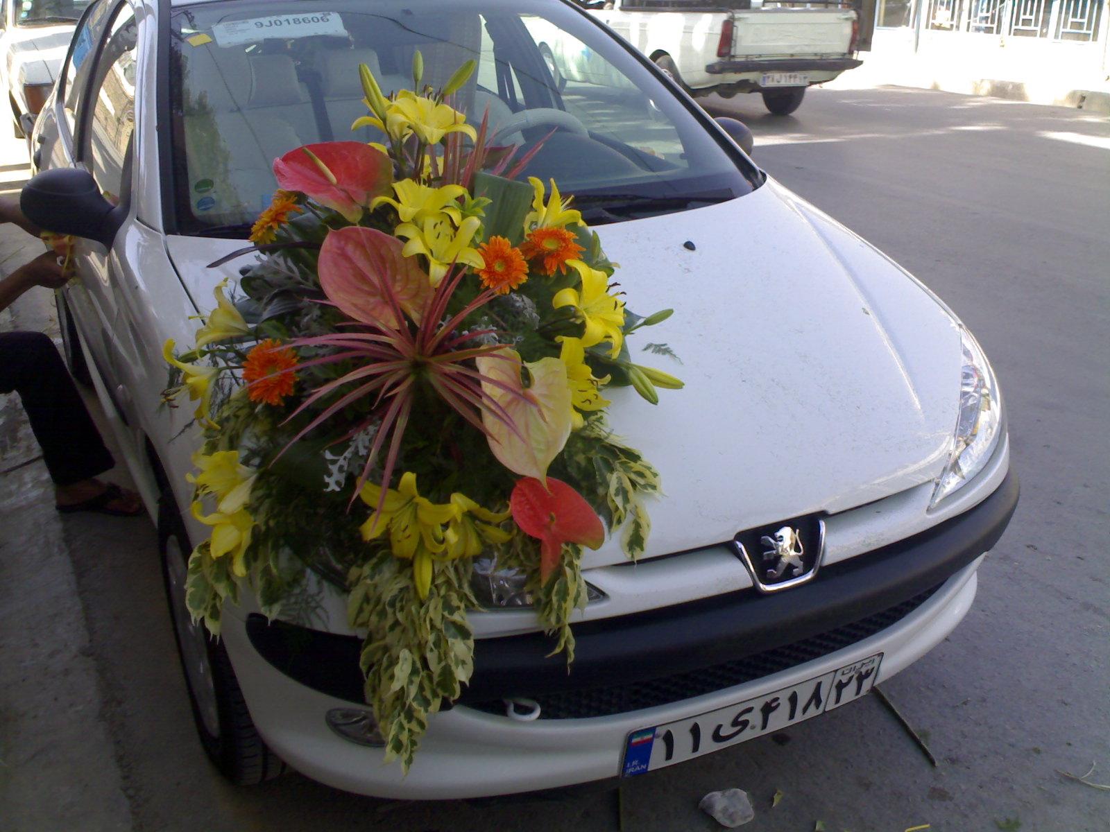 مدل ماشین عروس206